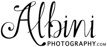 Albini Photography logo